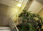 acesso escada-min